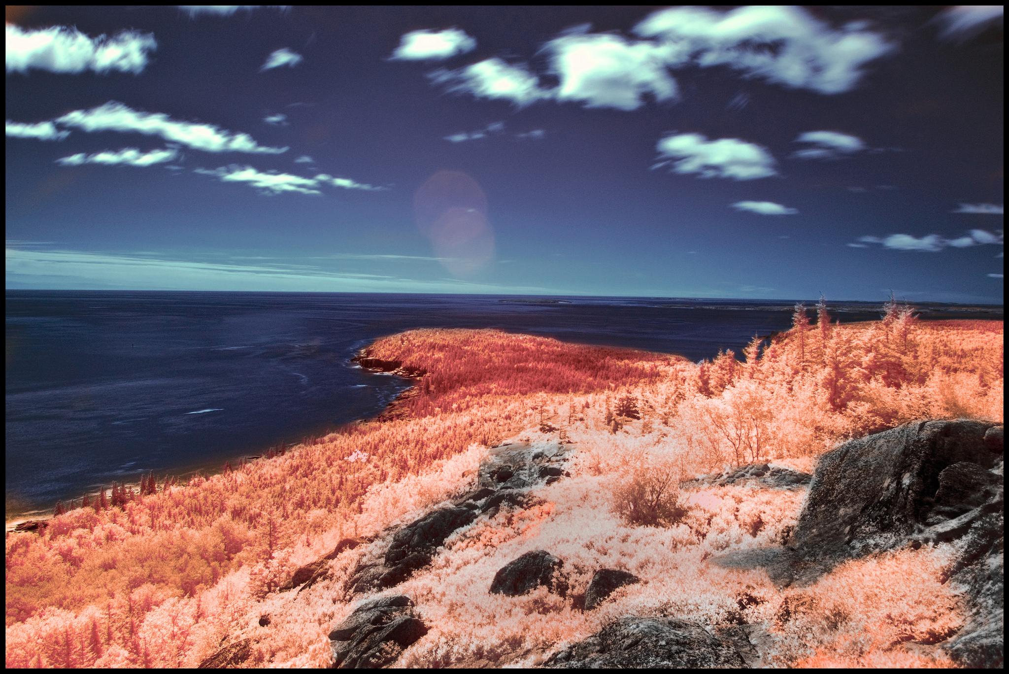 A Scene in Infrared