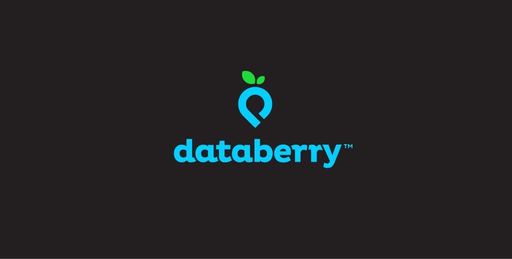 Databerry.png