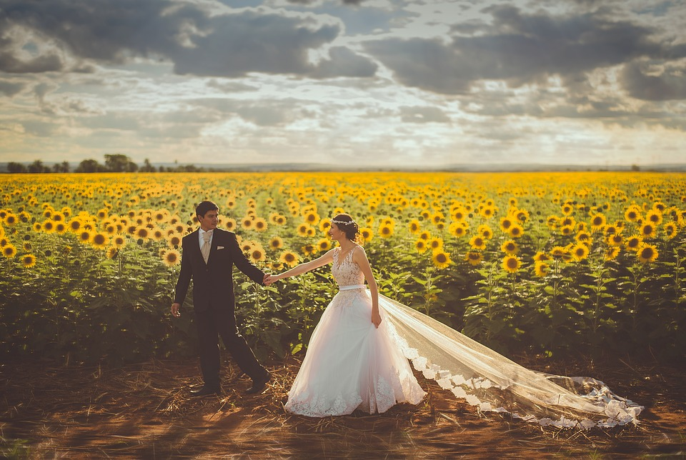 newly married couple holding hands walking through a field of sunflowers