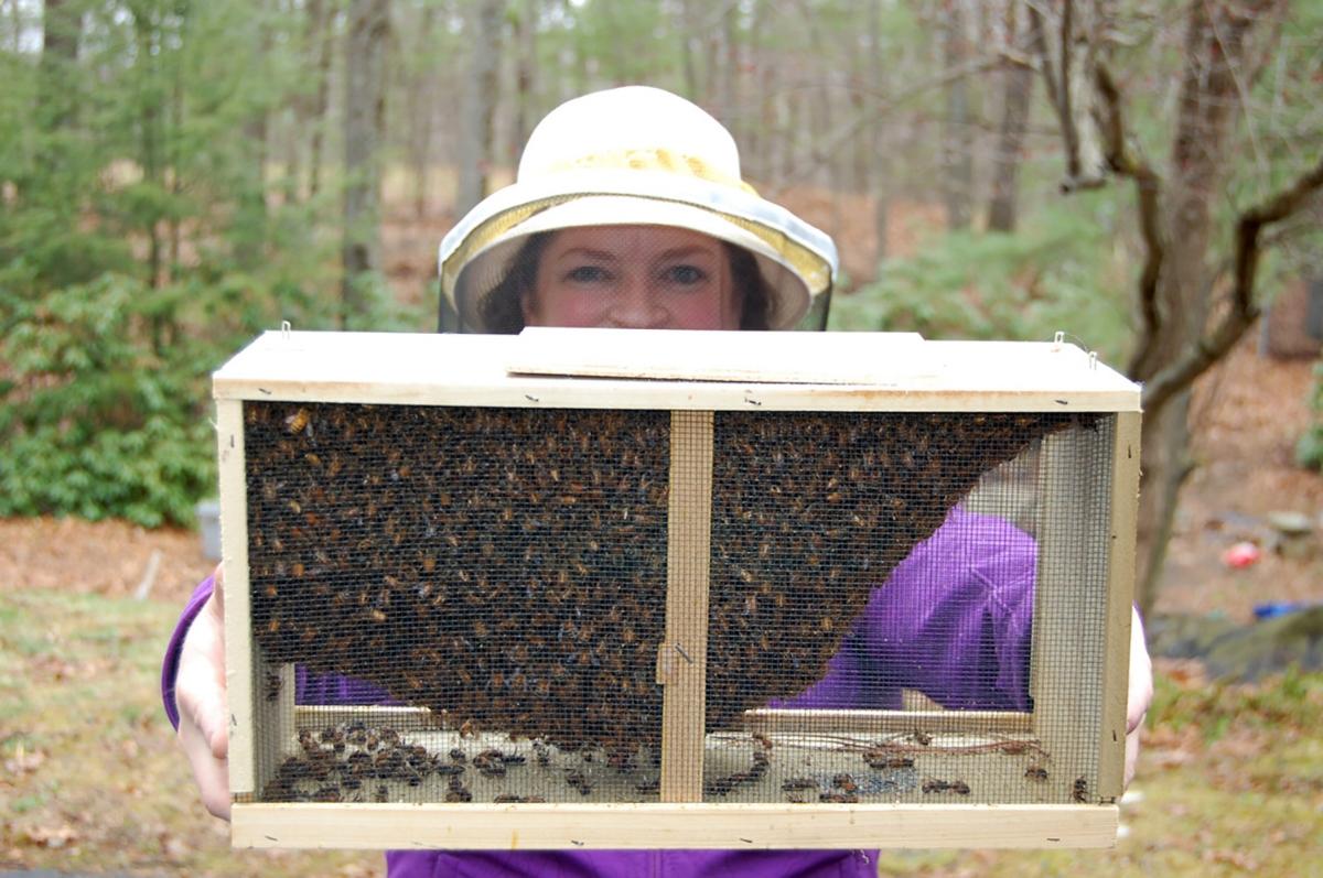 Janice-and-bees.jpg