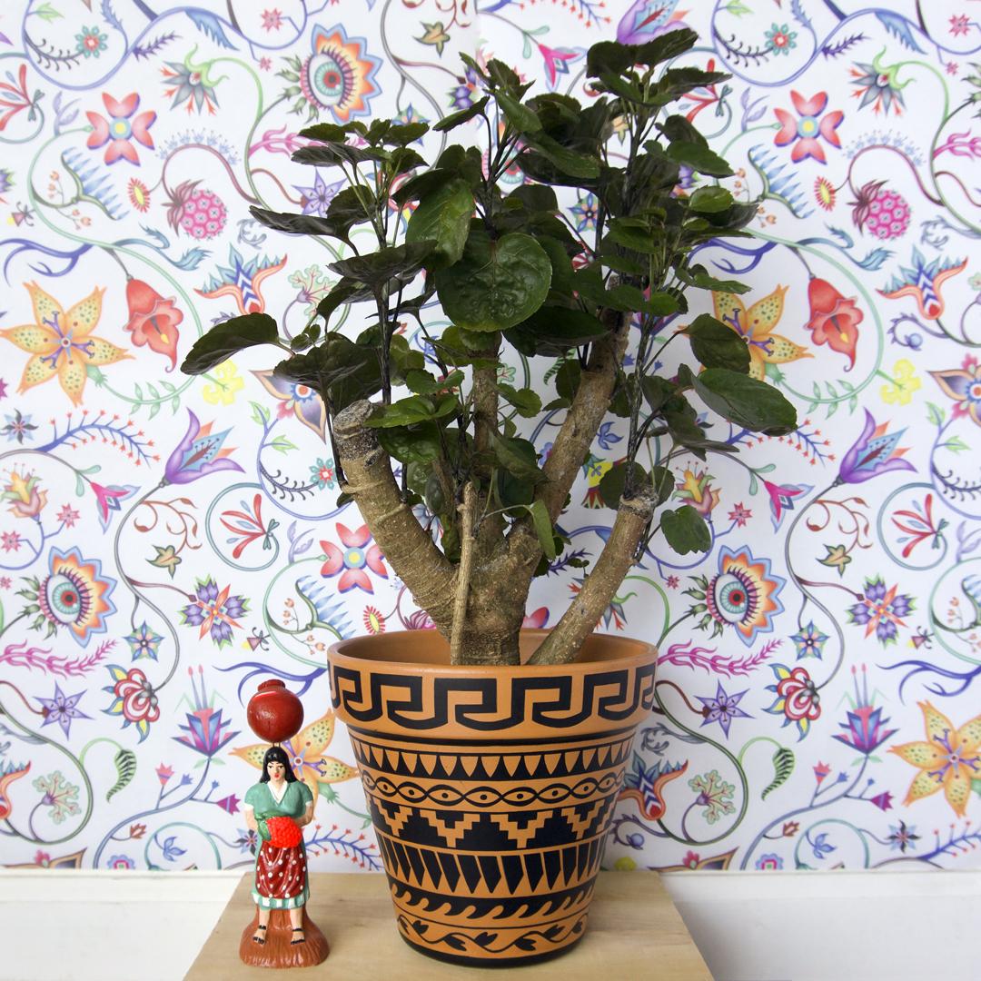My Navajo Pot-TJ Lady.jpg