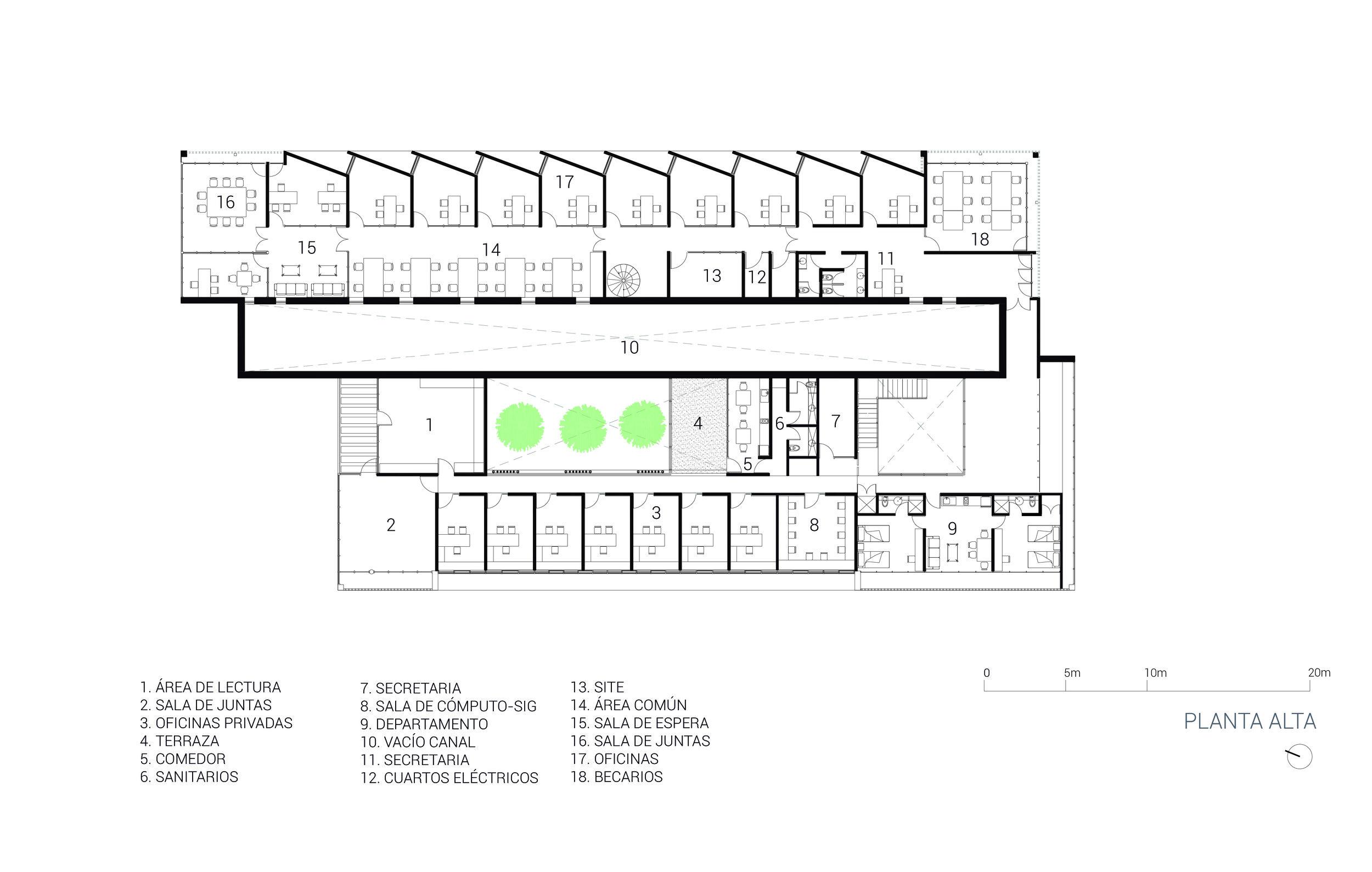 2. Sisal PLANTA ALTA.jpg