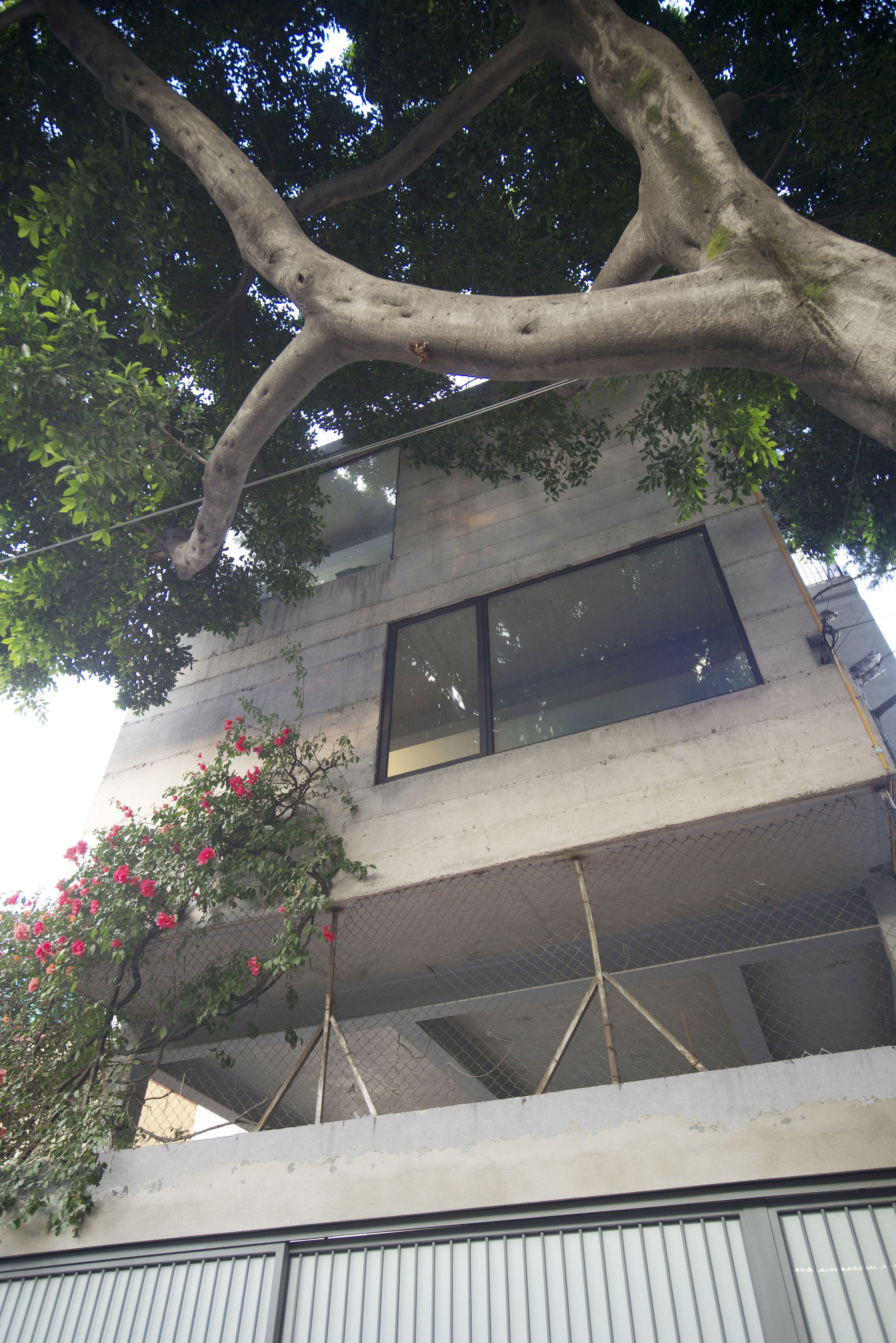 Q. Casa Estudio-Invernadero.jpg