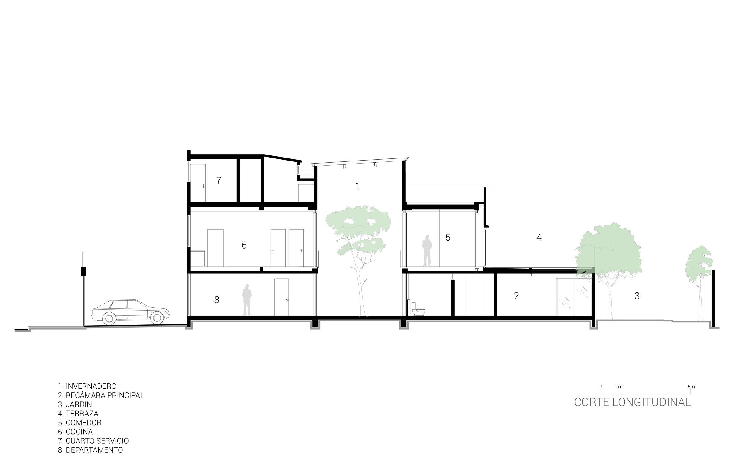 4. Corte Longitudinal árbol_Casa Estudio-Invernadero_BBL-ARQUITECTOS.jpg