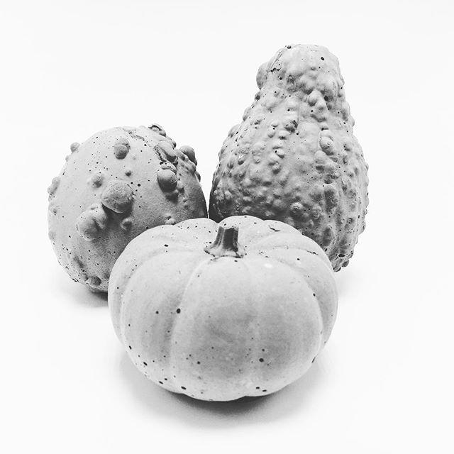A bountiful harvest. // #concrete #concretedesign #concreteart #concretedecor #concretefurniture #concretepumpkins #sandiegomade #sandiegomaker #makersmovement #sandiegomakers #makersgonnamake