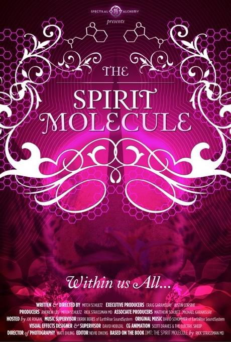 dmt-the-spirit-molecule-186797l.jpg