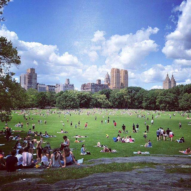 Summertime arrived 💙💚 #centralpark #sheepsmeadow #nyc