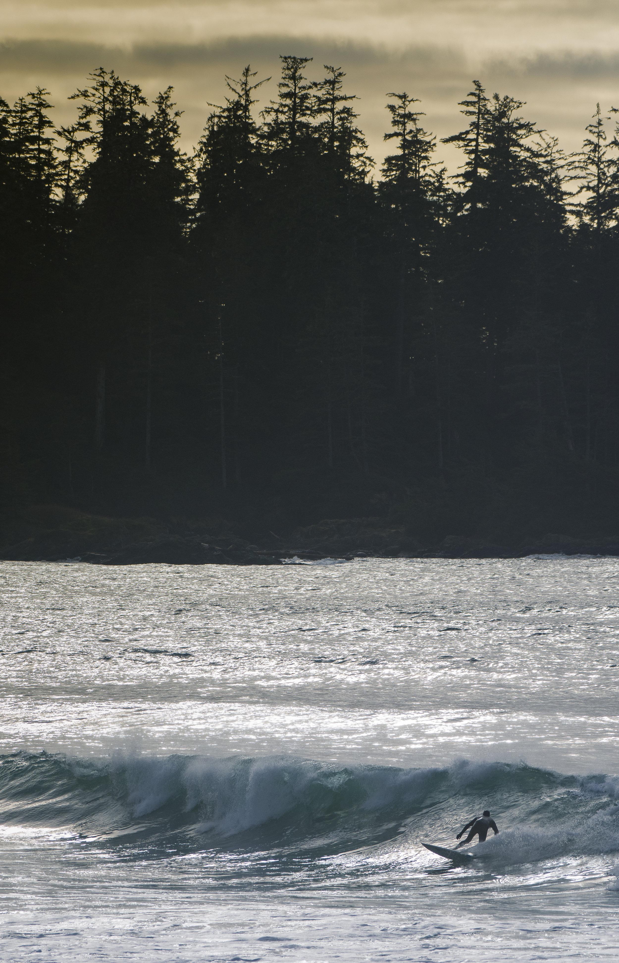 Golden Hour Surfing.JPG