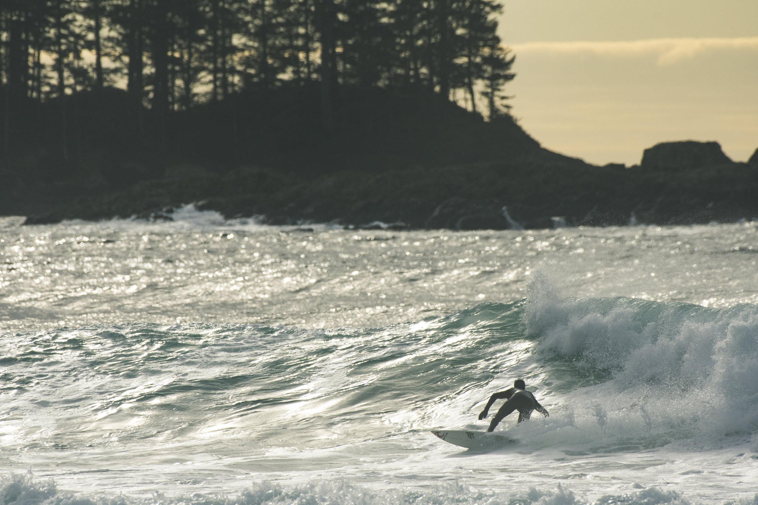 Surfing Golden Hour.JPG