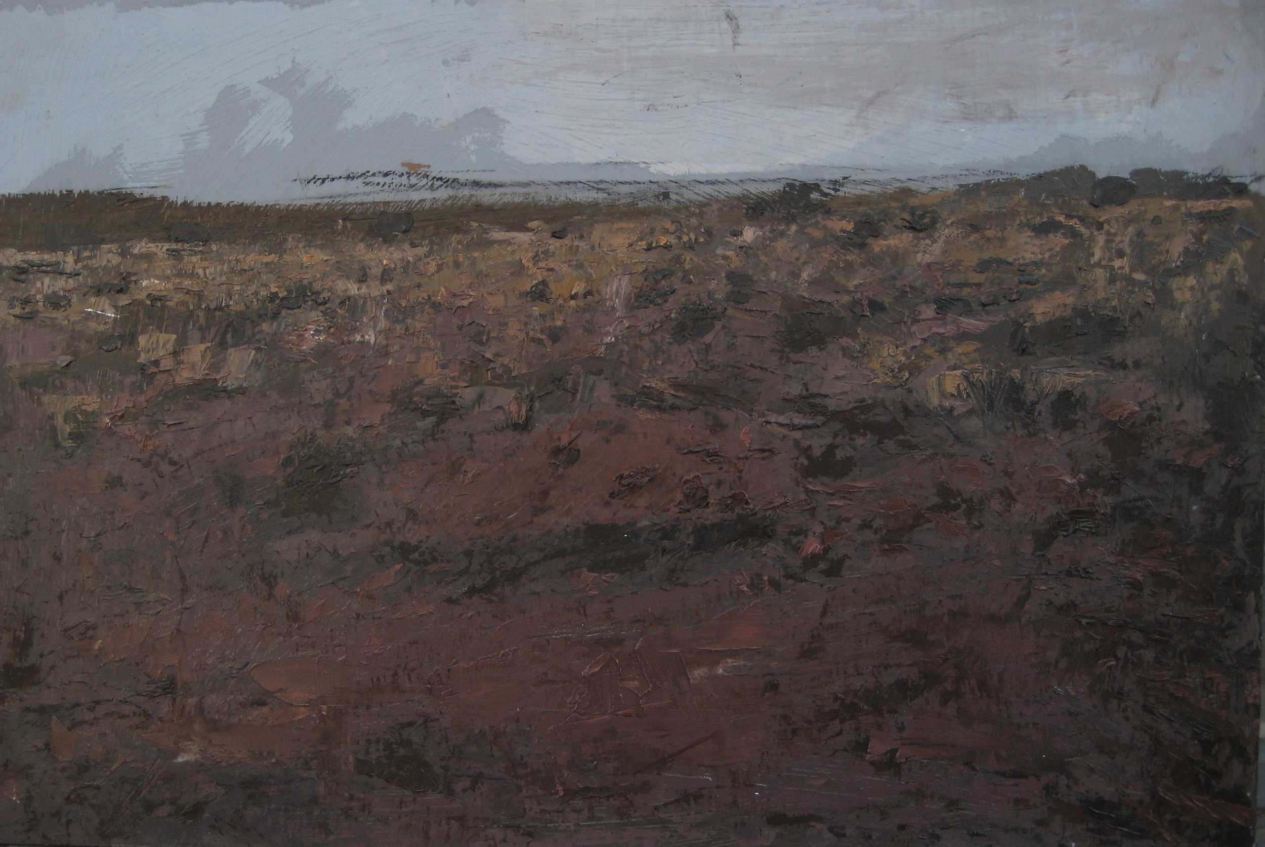 "San Rafael Desert, 20"" X 16"", SOLD"