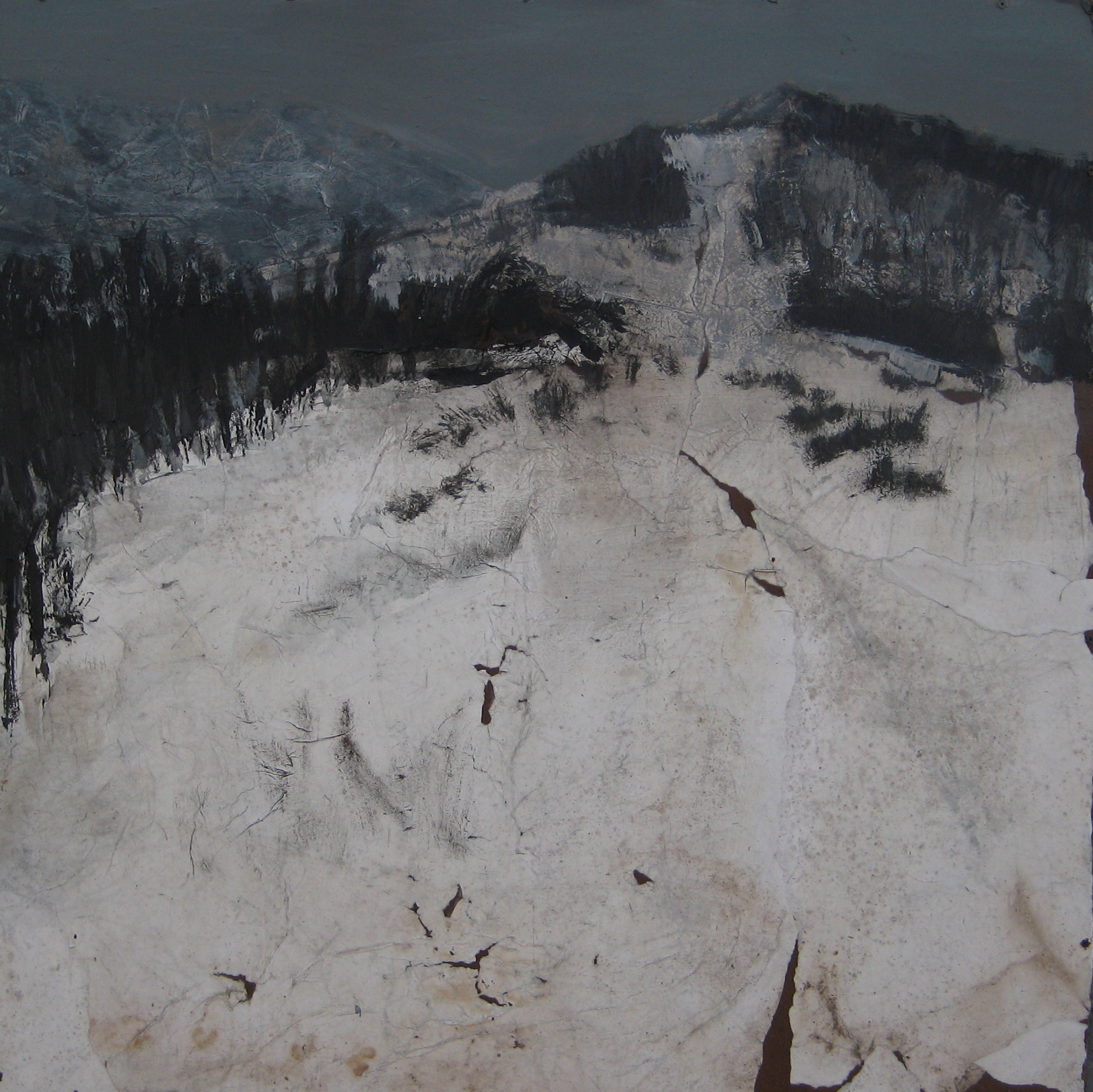 "Dark Mountain, 48"" X 52"", 2008"