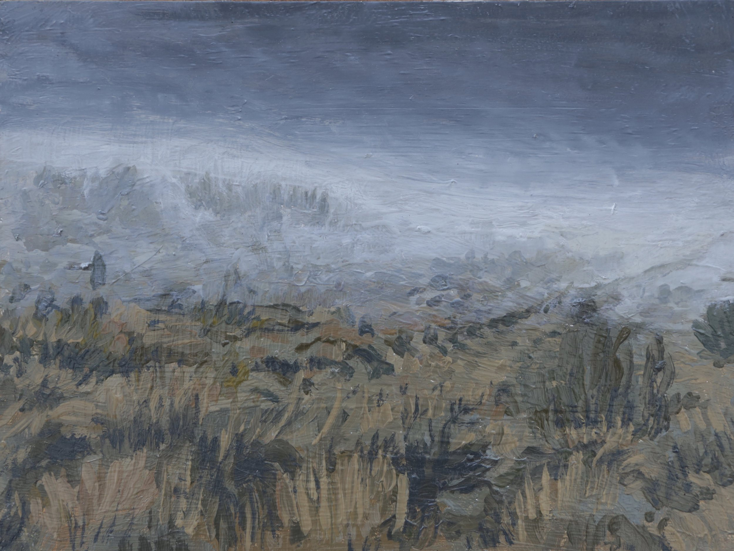 """High Country Fog #1, 11""""x14"""", 2012, Sold"""