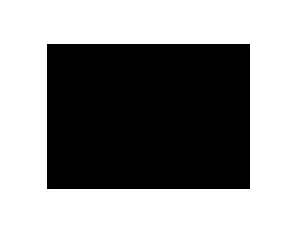 Business Chicks Logo