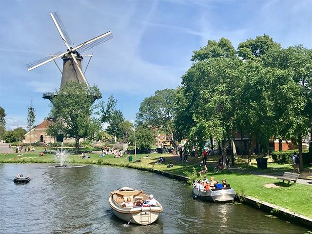 Sometimes you get that postcard image  of a place. The Dutch don't use enough olive oil but they make up for it with cheese, bikes and awesome tap water #postcardplaces #dutchlight #windmill #dutchpainting . . #oliveoil #documentary #film #wrter #femaledirector #arabamerican