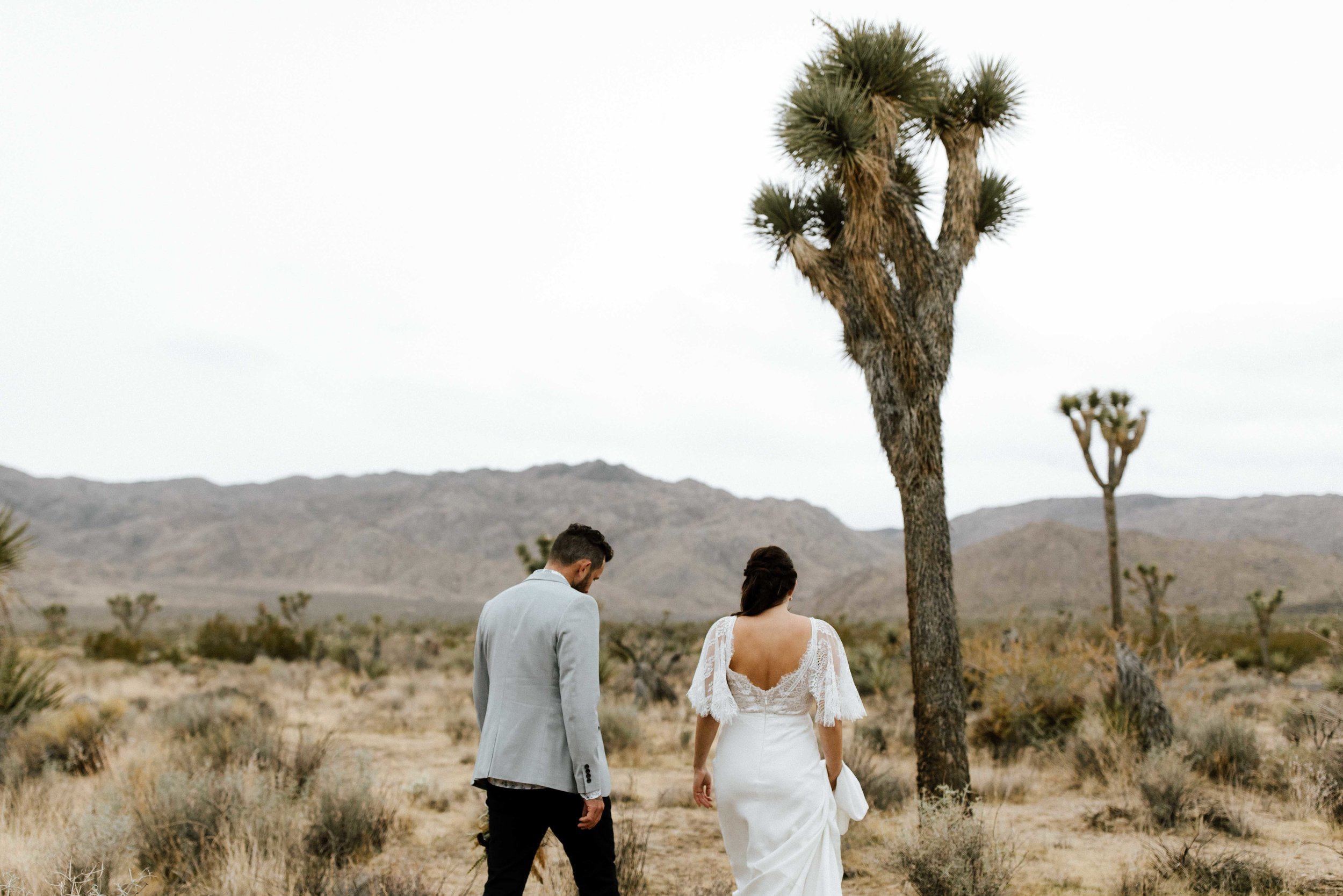 America Joshua Tree Palm Springs Elopement wedding-44.jpg