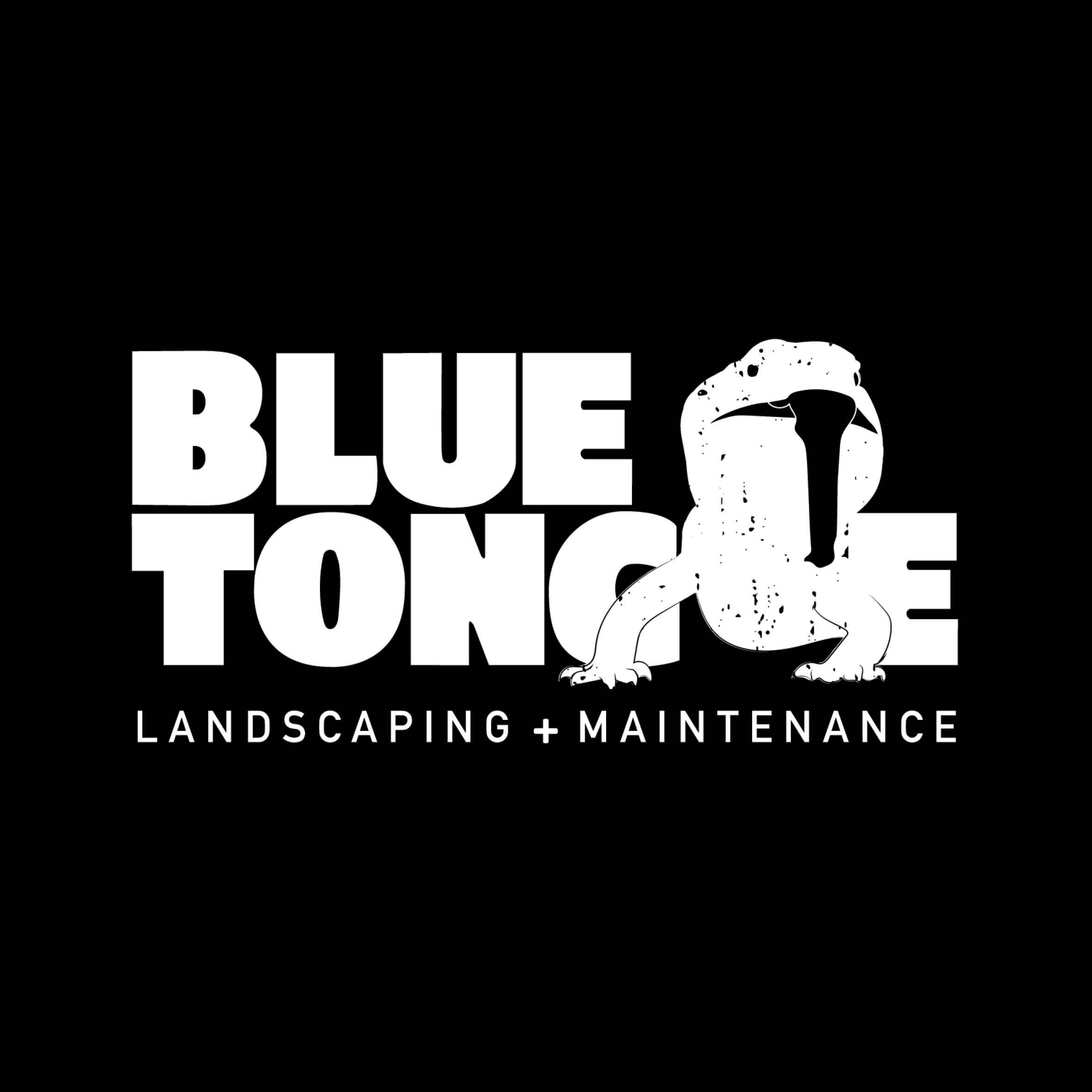 Client-logo-cover-bluetongue-property.jpg
