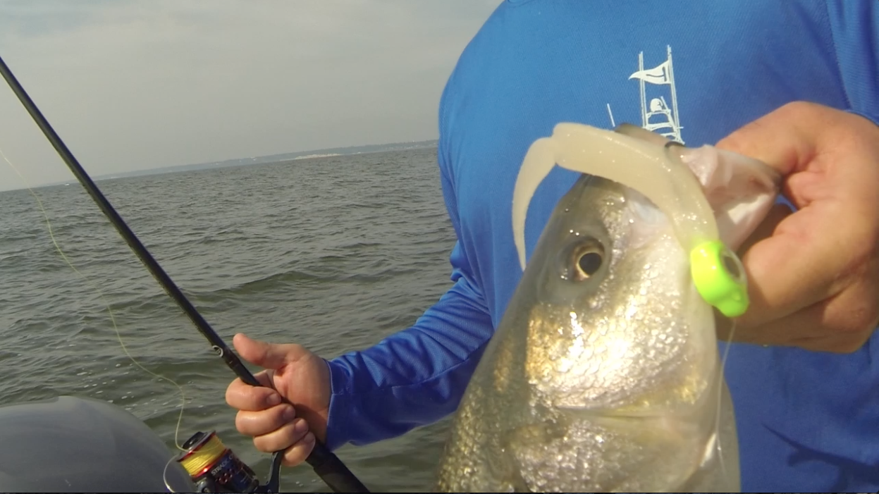 G-Eye Jig 2015-06-05 at 12.07.16 PM.png