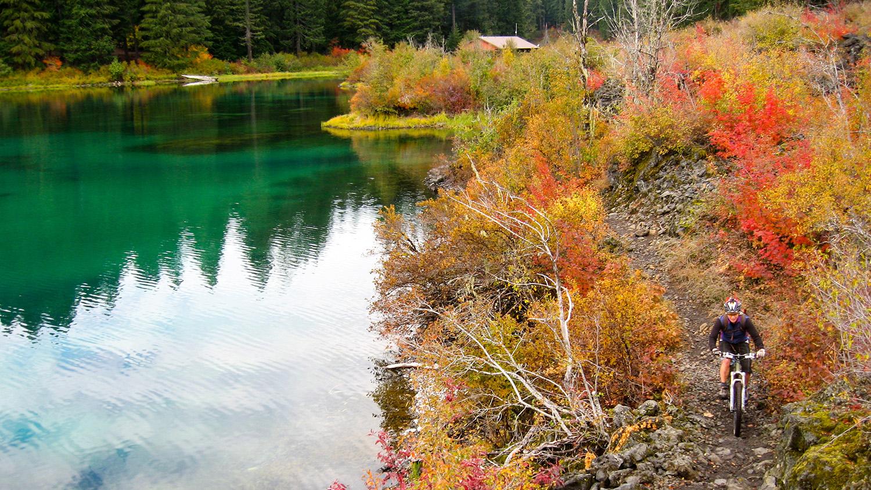 McKenzie River Trail, Oregon. 5 Mountain Biking Trails with Stunning Scenery in the USA - The Wayward Post.