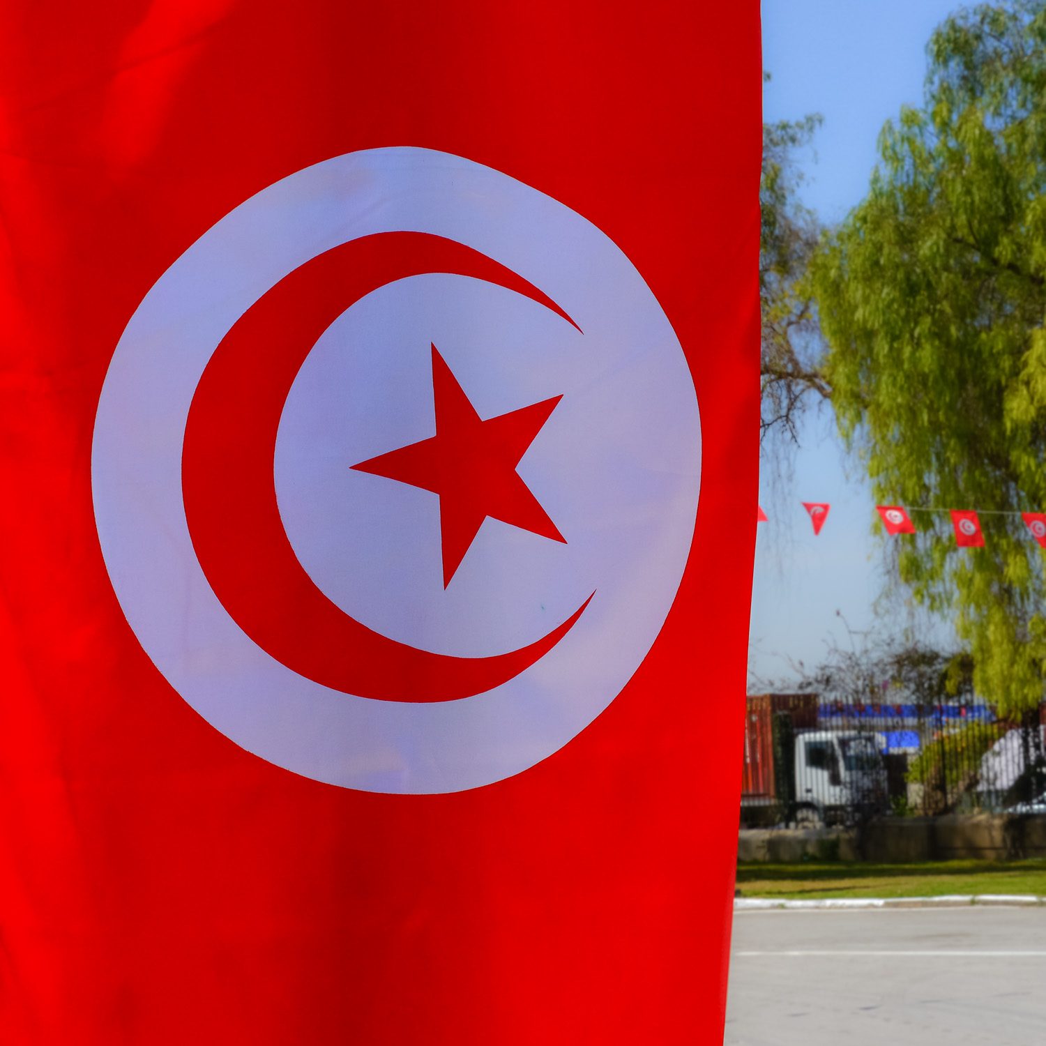Tunisian patriotism was on display. Photo by Johanna Read TravelEater.net.