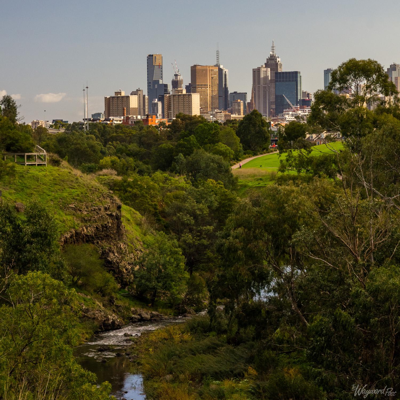 Yarra Trail Melbourne - Photo by Zygmunt Spray