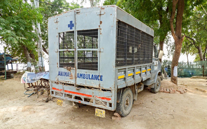 Animal ambulance Wildlife SOS.