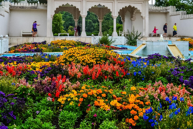 Hamilton Botanical Gardens. Photo by Julia Reynolds.