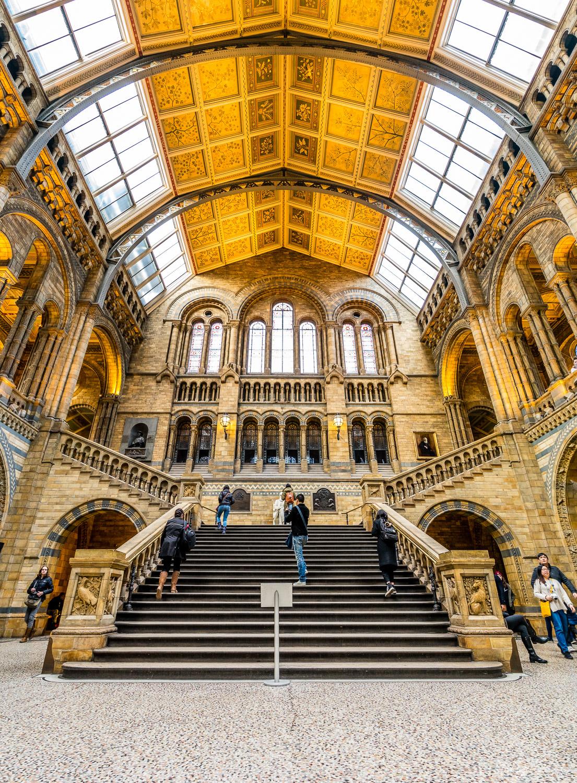 British Museum Great Hall.  Photo by Zygmunt Spray.