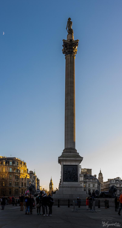 Nelson's Column in Trafalgar Square. Photo by Zygmunt Spray.