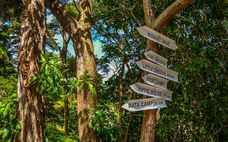 Golden-Bay-Hideaway - Julia Reynolds - The Wayward Post (7 of 13).jpg