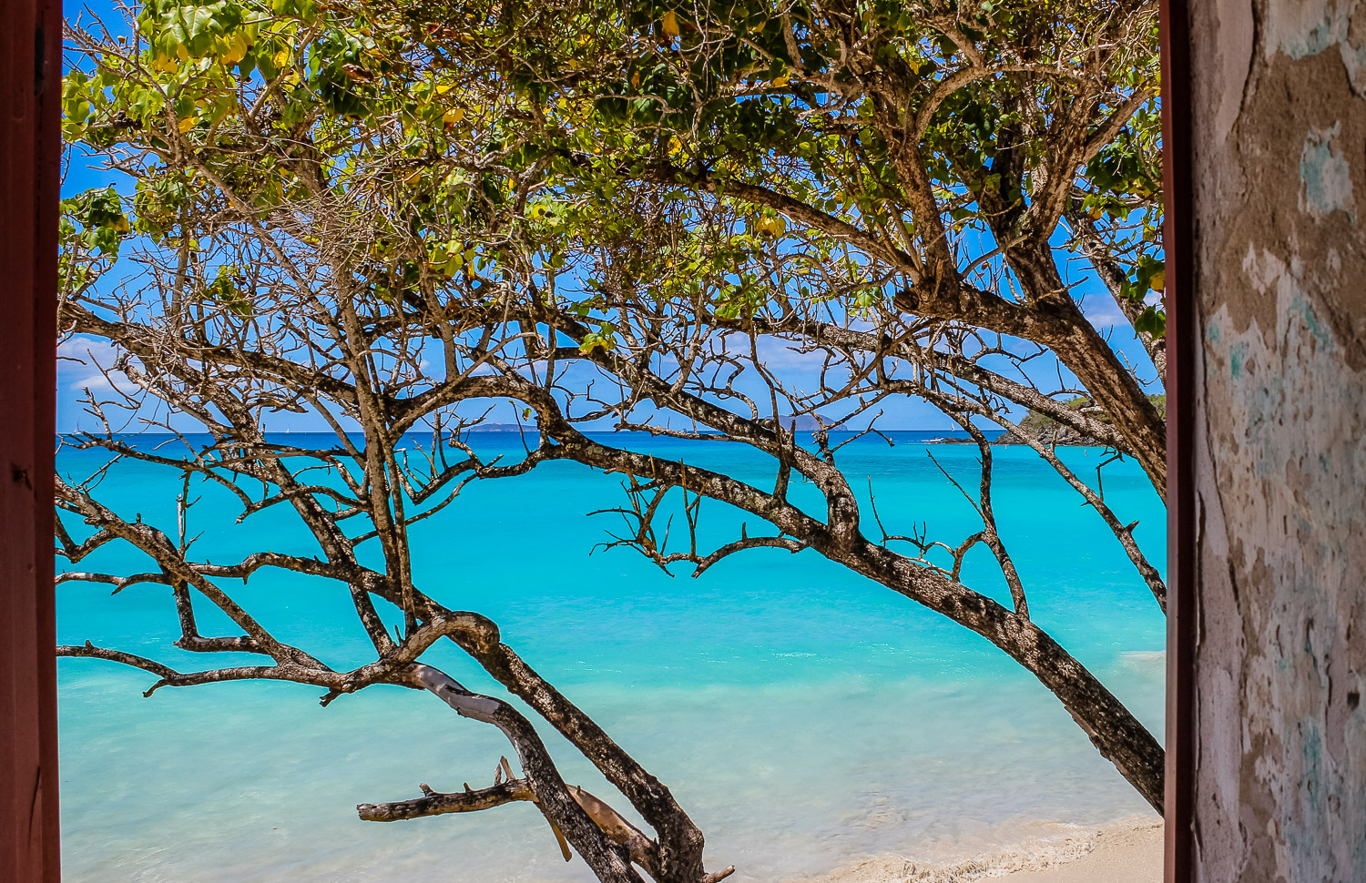 view of Cinnamon Bay from the archaeology museum - Responsible Travel in the Virgin Islands