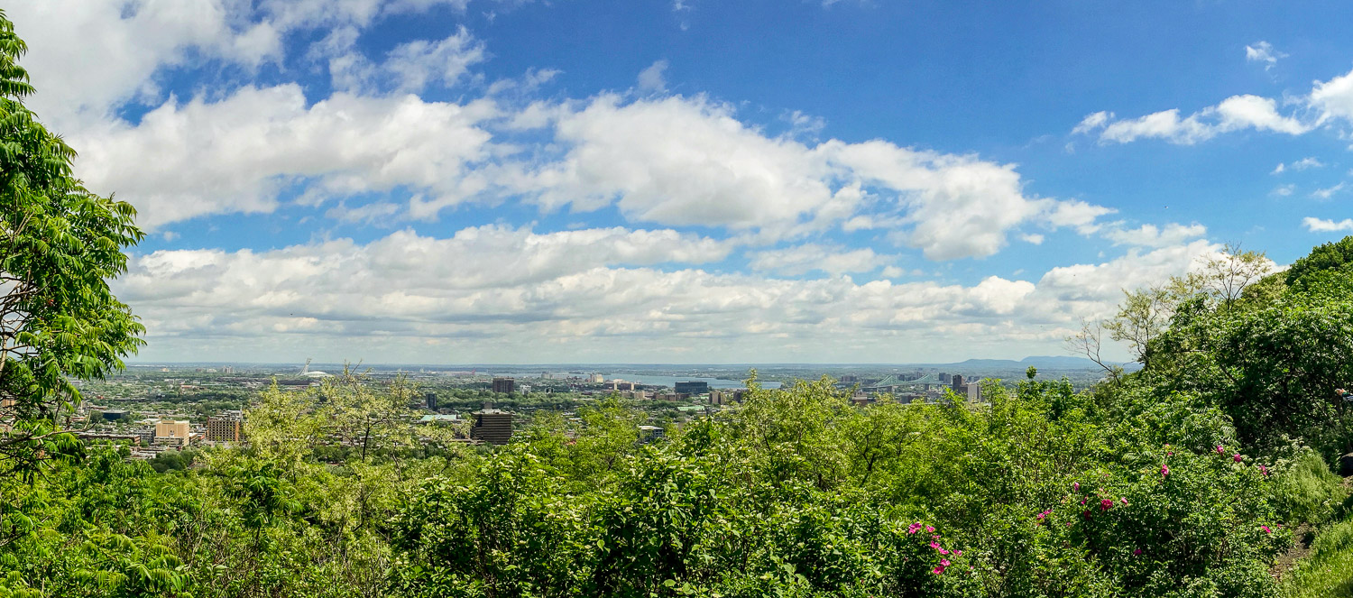 City view from Mont Royal, the highest point in Montreal. Credit C Laroye - A Wayward Weekend in Montréal