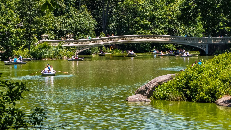 Central Park - The Wayward Post, Weekend in Brooklyn NYC