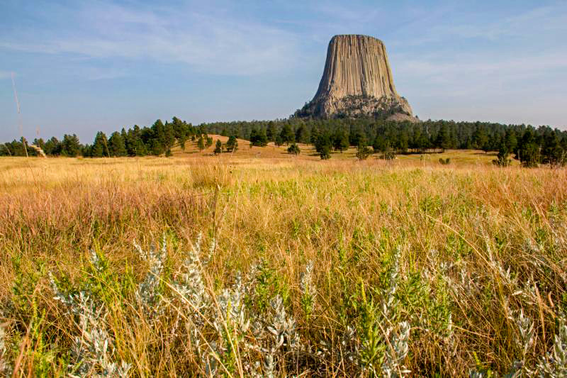 Devils Tower National Monument seen from the Joyner Ridge Trail. Photo Credit NPS -Avery Locklear