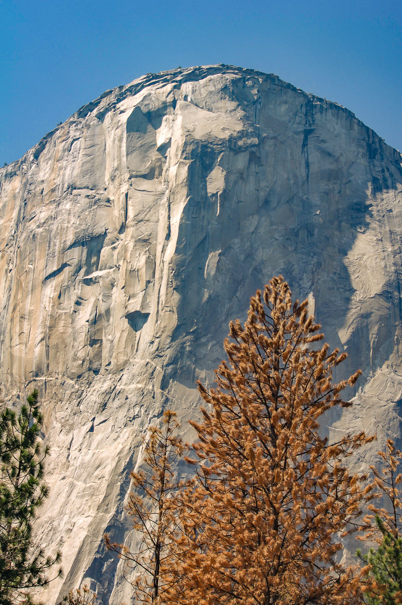 Yosemite 7 - Wayward Tour Through National Parks in the Southwest.jpg