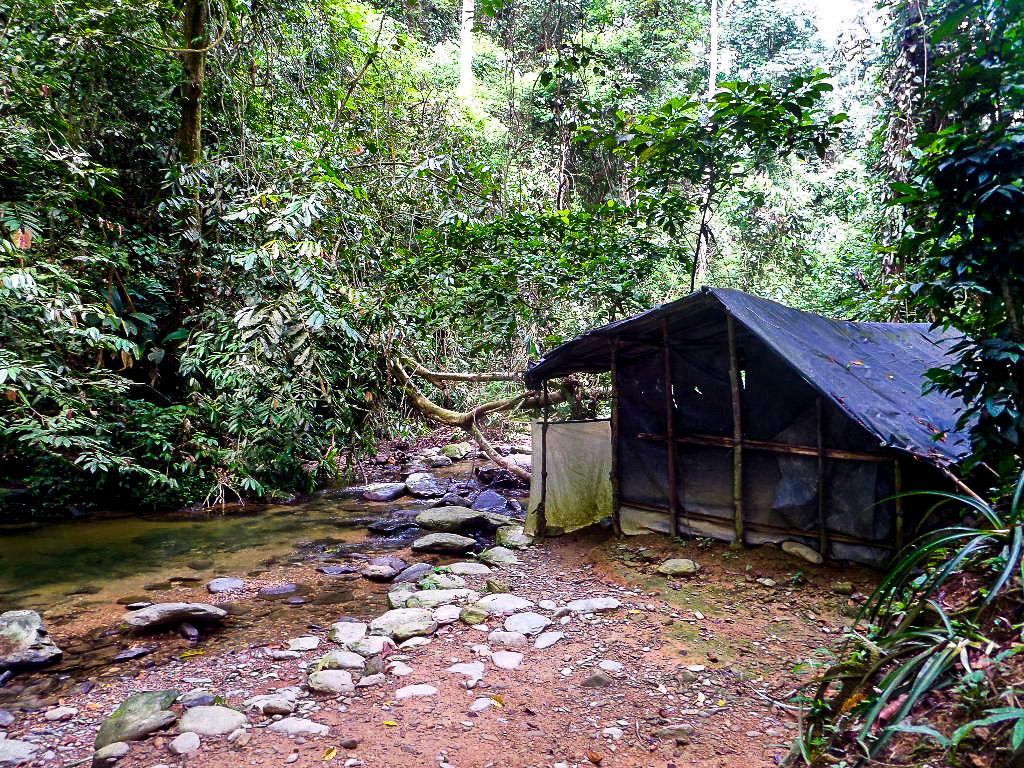 Jungle_Camp.jpg