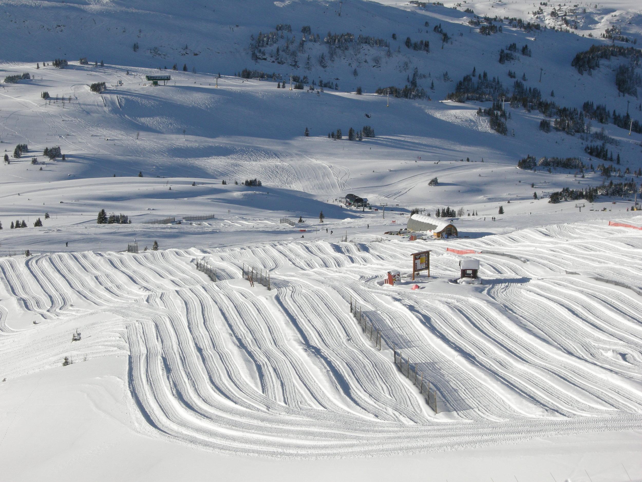 Snow Harvesting At Sunshine 2010