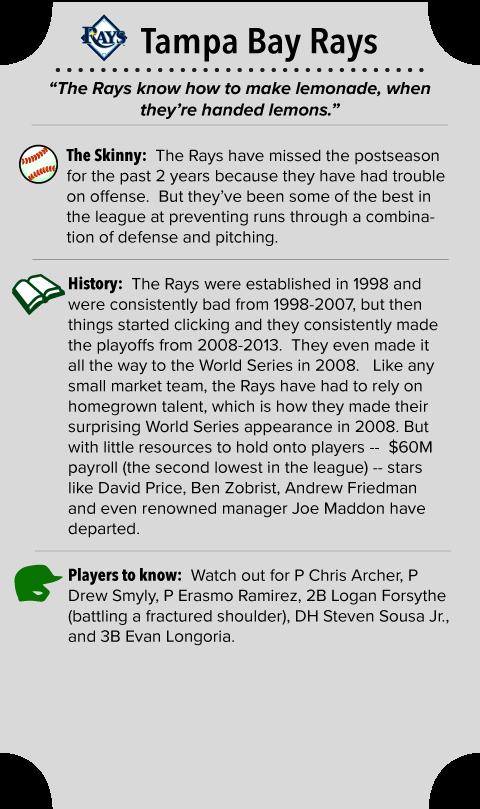Tampa Bay Rays Team Summary