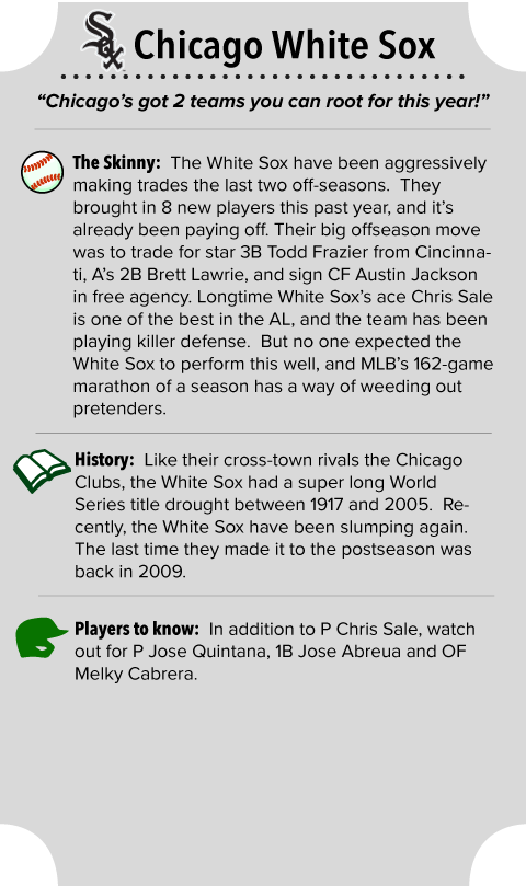 Chicago White Sox Team Summary