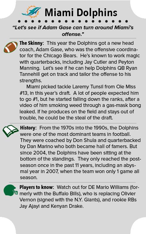 Miami Dolphins Team Summary