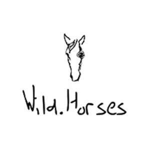 RYAN AMMON PHOTOGRAPHY PARTNERS - WILD HORSES LABEL
