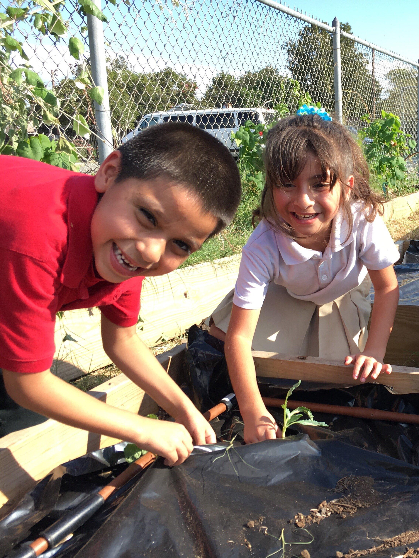 Gardopia Gardens at the Ella Austin Community Center
