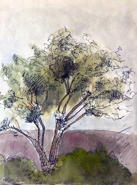 Tree (2011), pen and watercolor