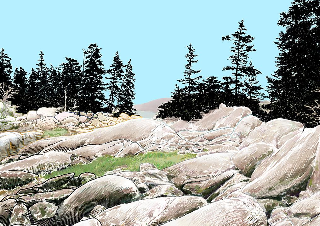 7 72 dpi swans island illustration.jpg