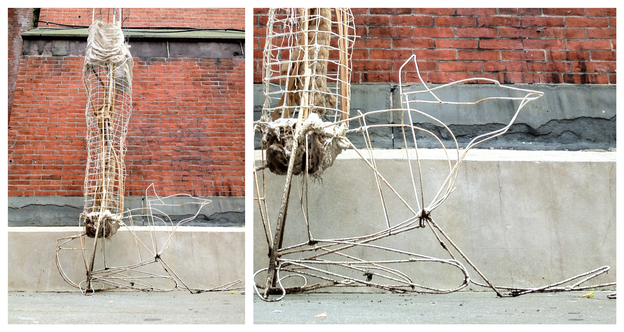 2012-04-15 005 human bull frog copy.jpg