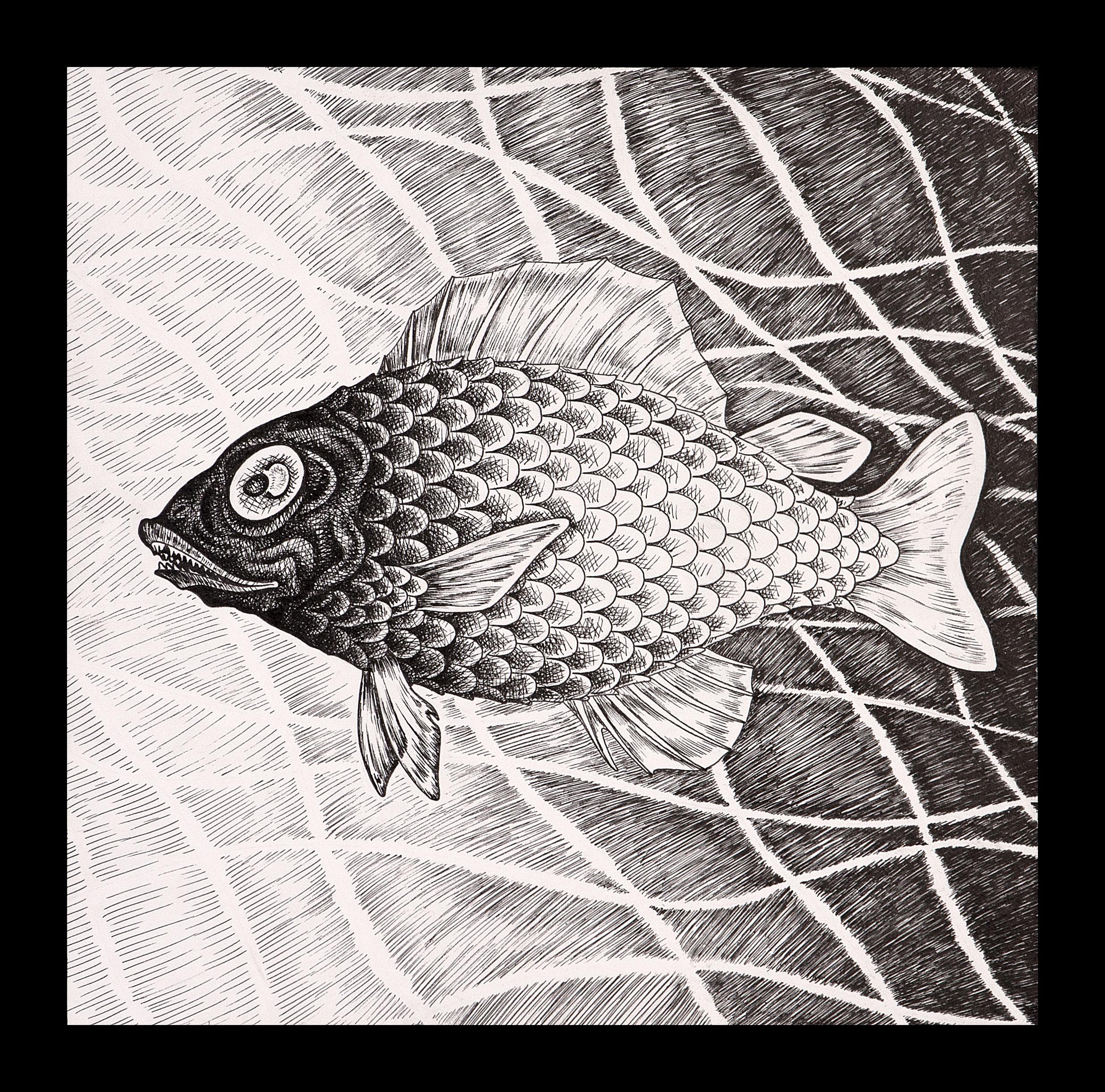 I Wish , I Wish I Was a Fish