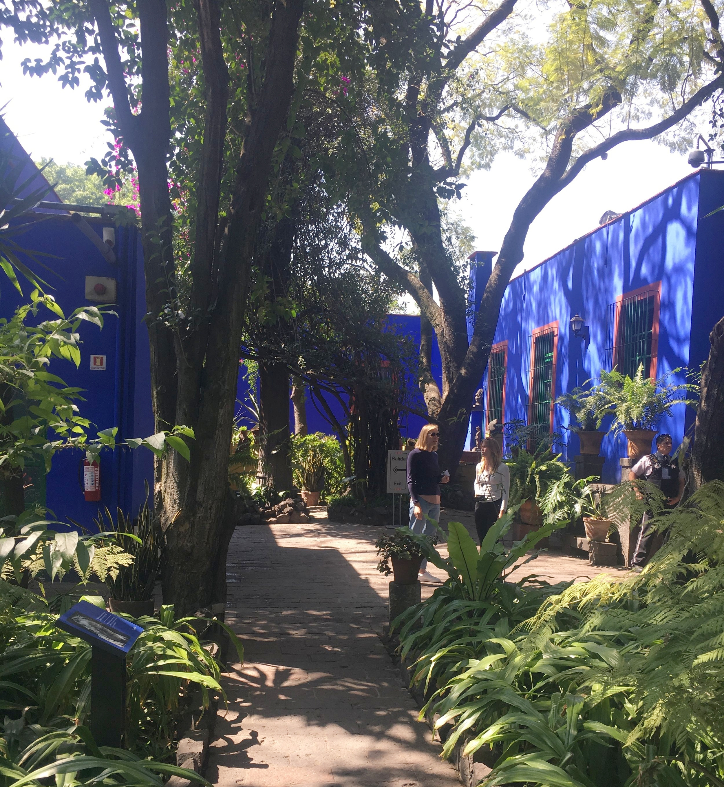 Frida Kahlo's house and museum in Mexico City.