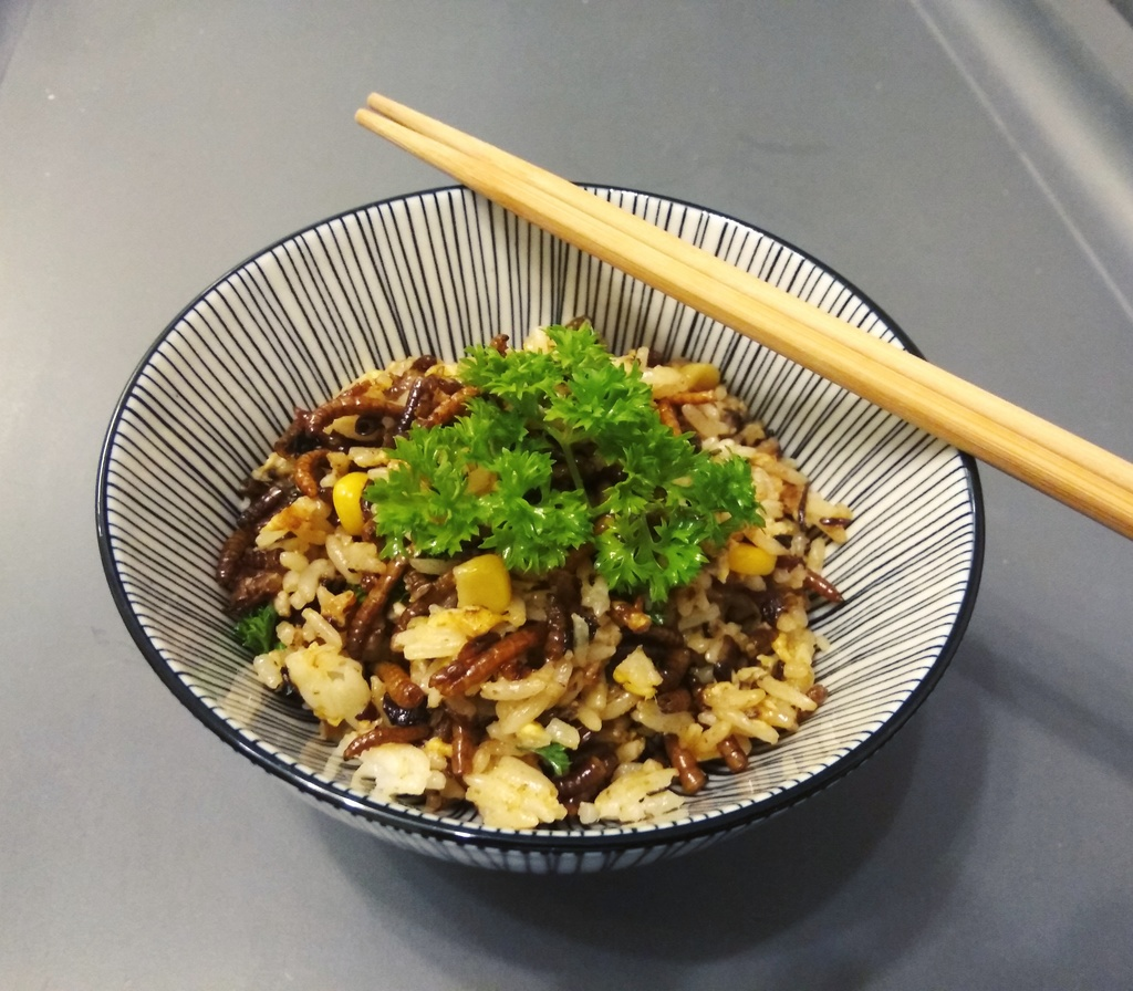 Mealworms fried rice .jpg