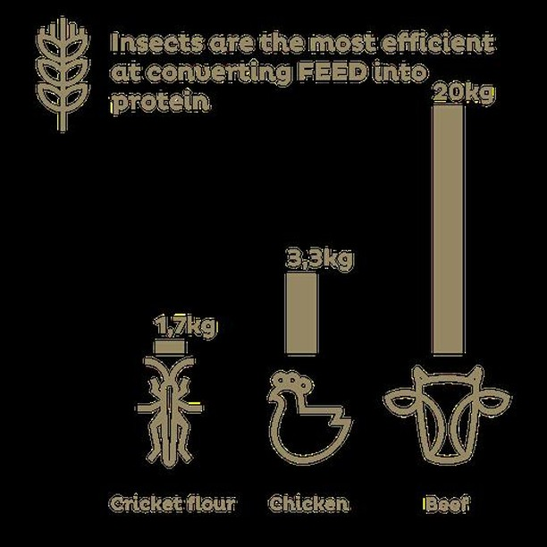 😯🐛 Insects are the most efficient at converting feed into protein! Check out Dare to Eat Natural here: https://kck.st/2OBYzFY  Can't wait to save the planet? Get our Hive™ here: http://bit.ly/farmNOW  are YOU #farming yet? #entomophagy #edibleinsects #entovegan #bugappetit #futurefood #superfood #vitalproteins #b12supplements #foodsecurity #sustainablefood #ketodiet #paleodiet #vegandiet #farmtotable #foodinnovation #farmers #internetoffood #organic #protein #healthyoil #nogmo #circulareconomy #urbanfarming #upcycle #wholesome #healthy #planet #environment