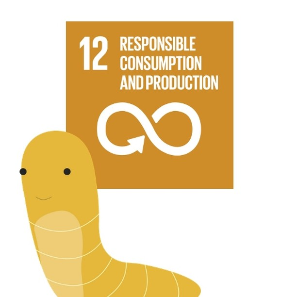 FARMING INSECTS IN A CIRCULAR ECONOMY? IT'S POSSIBLE! Sustainable development goal #12 is aiming for sustainable consumption and production patterns.  Each year, an estimated 1/3 of all food produced is thrown away. Clearly, we need to change that. Insect Farming offers great opportunities to tackle these problems. By feeding them organic leftovers (e.g. bread) wasting resources can be avoided and by using insects' dung in agriculture we can empower a circular economy by farming insects.  #SDGweek #UNSDGS #ResponsibleConsumption #ResponsibleProduction #recycling #waste #cop21 #reuse #sustainability #innovation #smartcities #buisness #zerowaste #agenda21 #csr #tech #climatechange #energy #green #sustainable