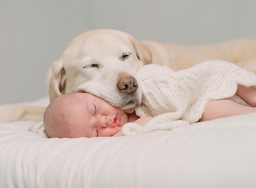 Newborn photographer Sandra Coan | Newborns on film | Film photography | Studio strobes and film | newborn photography